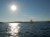 fra_oslofjorden